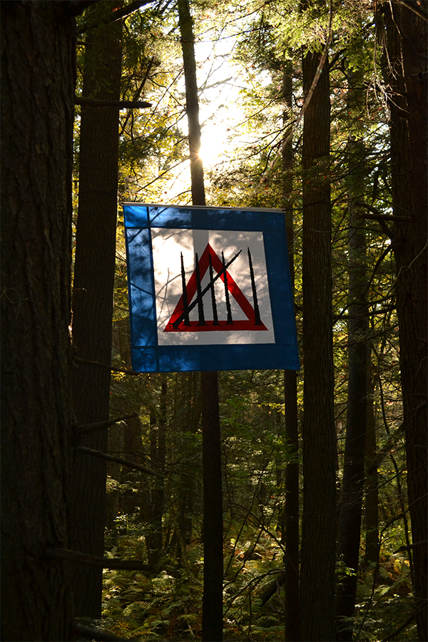 Sixth Extinction Flag, Hemlock Hospice Installation at Harvard Forest. Photo by Salua Rivero.