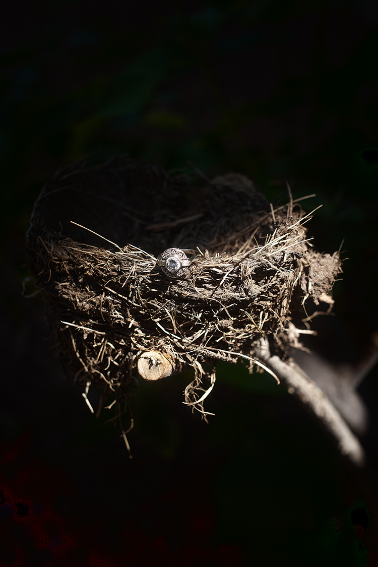 nest ring(WEB).jpg