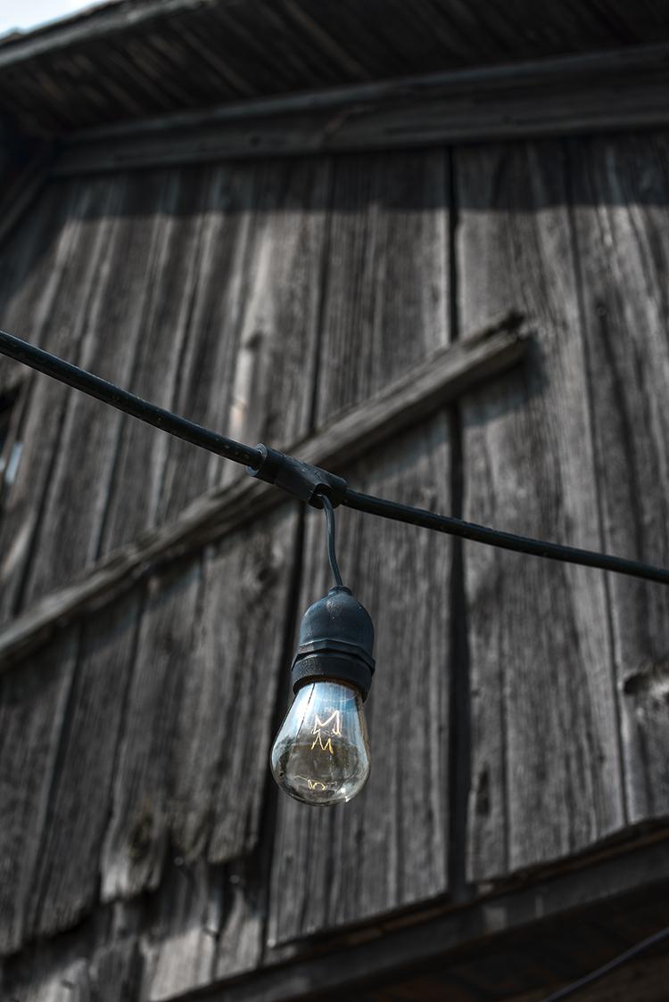 bulb(web).jpg