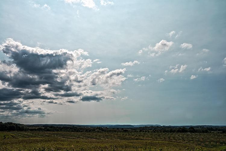 skyline(WEB).jpg