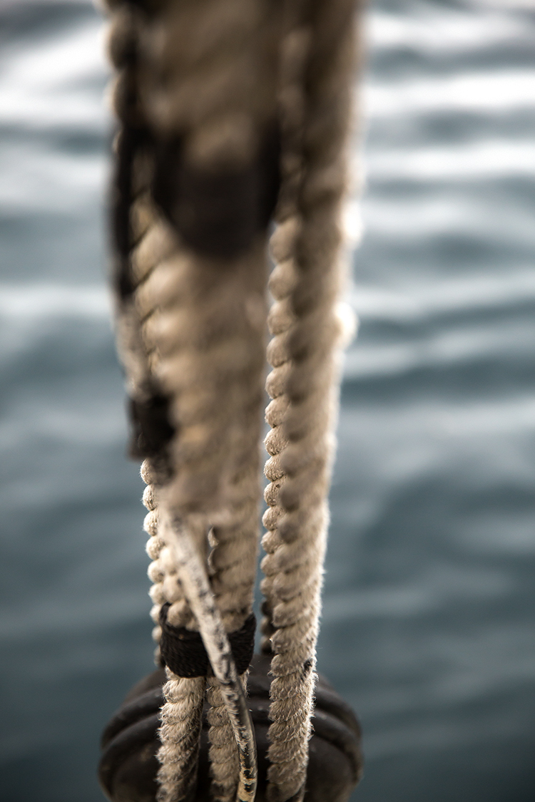 ropes & pulley(WEB).jpg