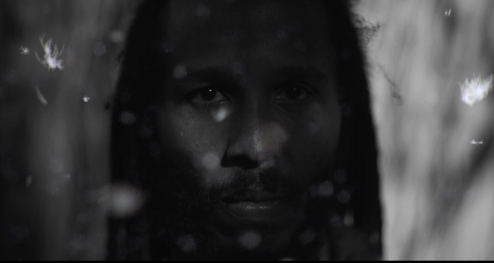 "Ziggy Marley ""Lighthouse"""