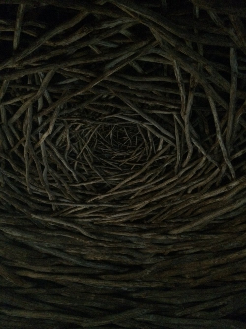 Andy Goldsworthy, Oak Room