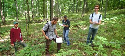 Ecology students surveying a forest. Photo by Jay Kelly.