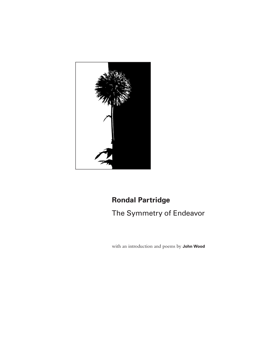 Rondal Partridge, The Symmetry of Endeavor