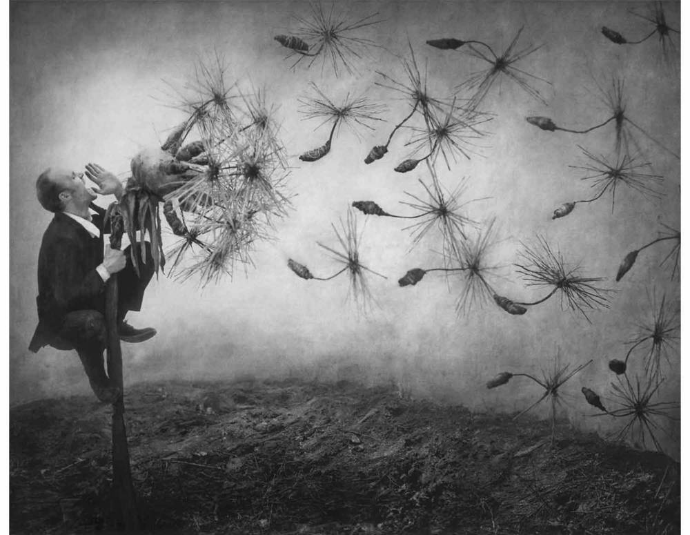 Robert and Shana ParkeHarrison from The Book of Life