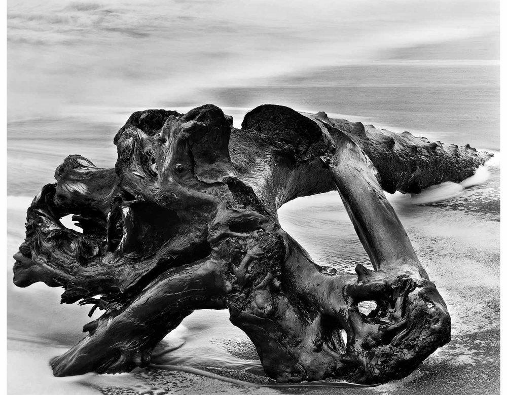 Bound_Driftwood1951.jpg