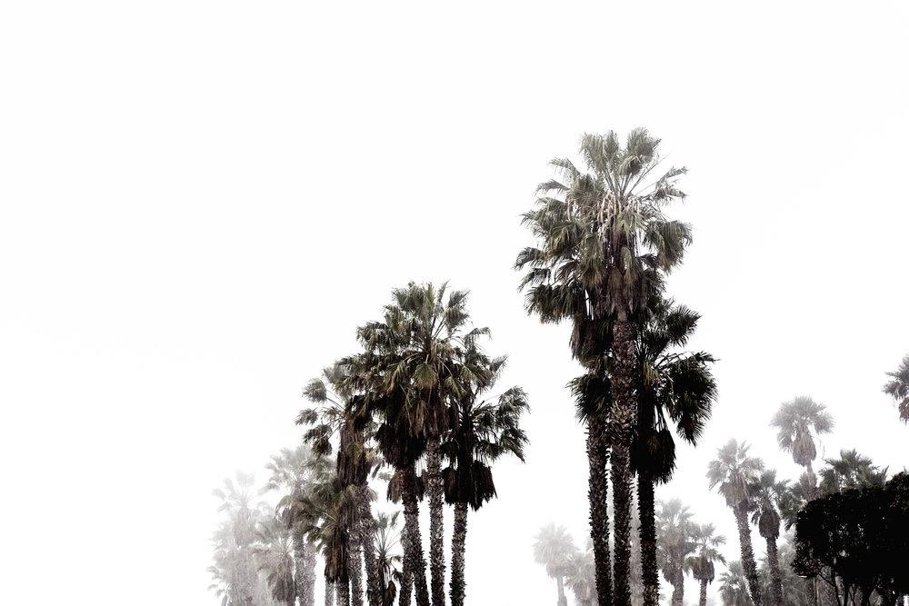 Ventura_Surf_097.jpg