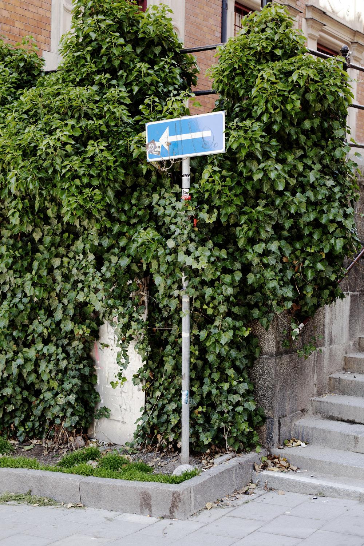 Sweden_MidSummer_25.jpg