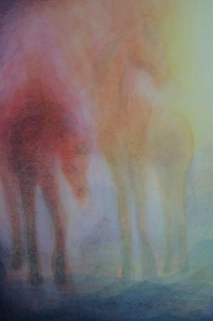 detail-sluiering-paard.jpg