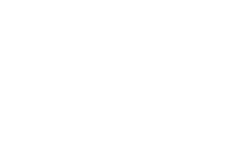 planet-9-film-fest-official-selection.png