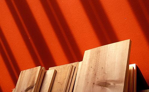 redwood1.jpg