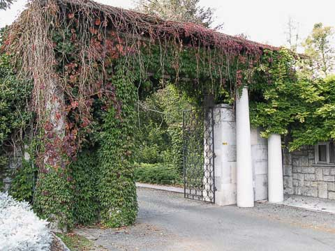 Entry gate to Tito's house