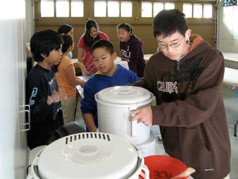 Rice grinder