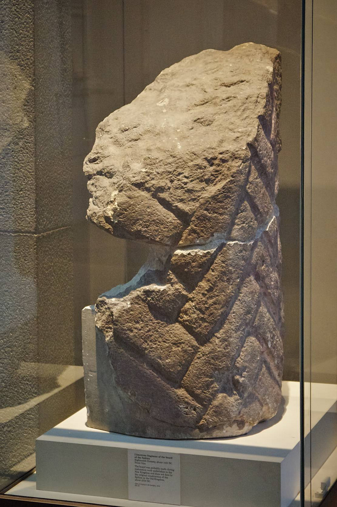 Sphinx beard