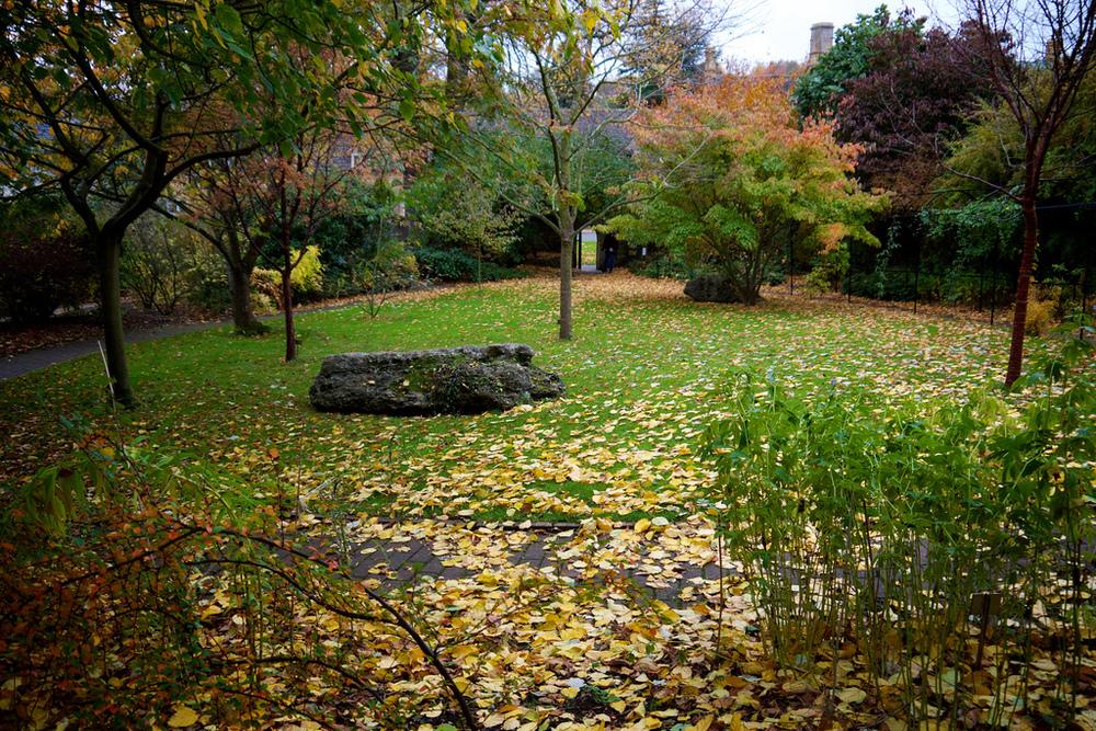 Ernest Wilson Memorial Garden