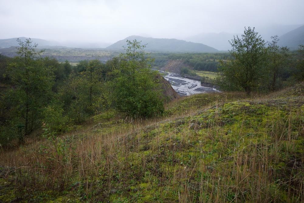 North Fork Toutle River