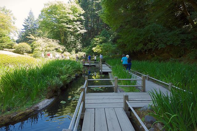 Zig Zag Bridge at the Portland Japanese Gardens