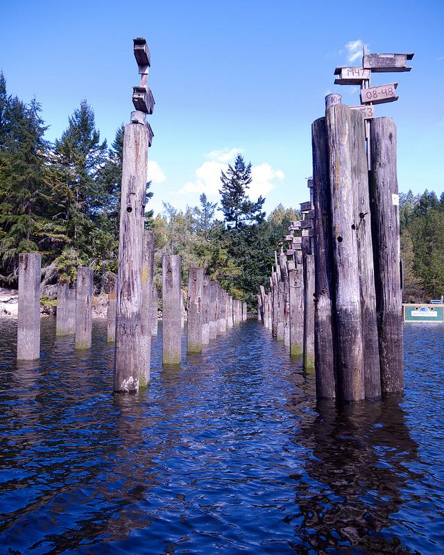 Houses for purple martins in Tod Inlet. We missed the birds by a couple days