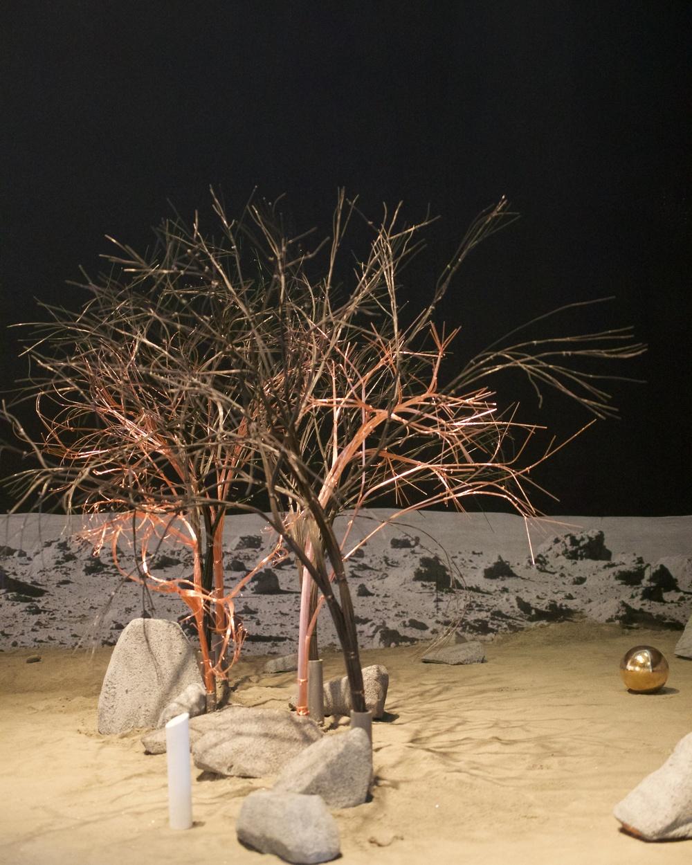 Aswa's Forest, Leah Gerrard