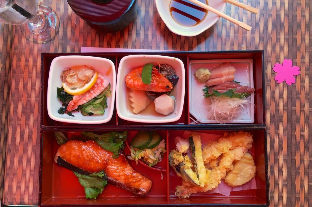 Bento box with sunomono seaweed scallop, Nimono braised root vegetables, yellowtail and blue fin tuna sashimi, salmon teriyaki (others had chicken katsu), tempura
