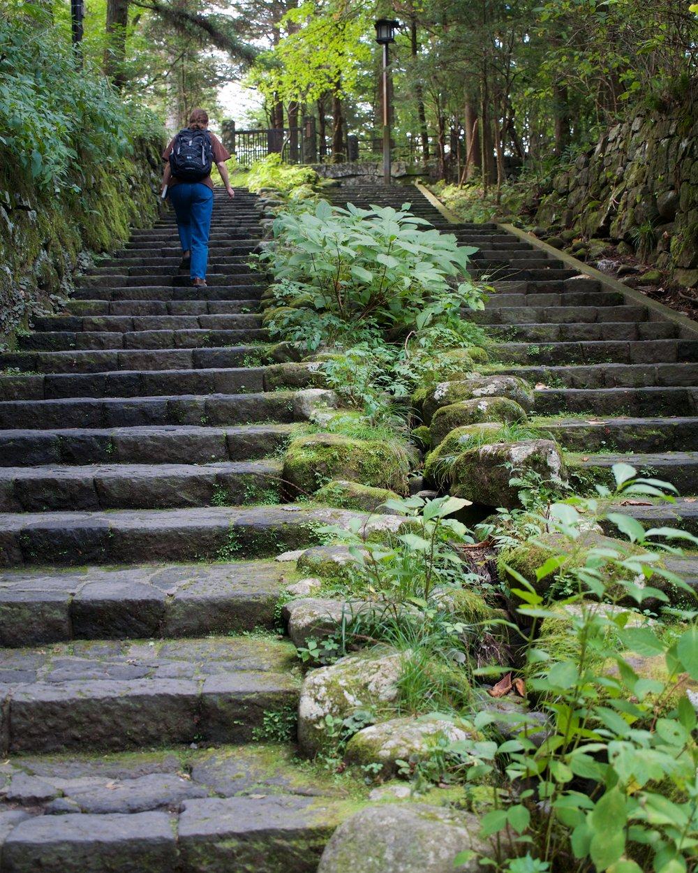Steps up to Nikko National Park