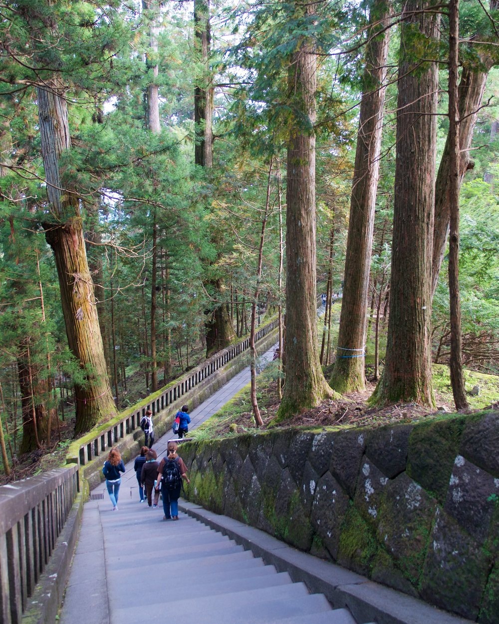 Steps to Ieyasus' Tomb, Toshogu Shrine