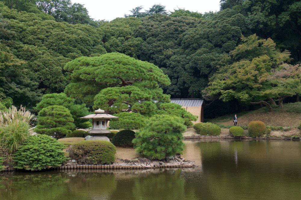 Upper pond