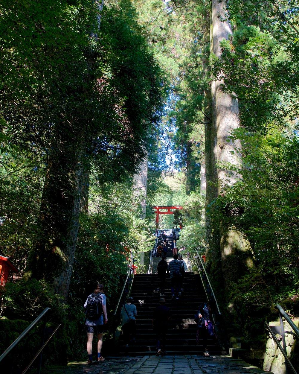 Yet more stairs going up to Hakone Shrine