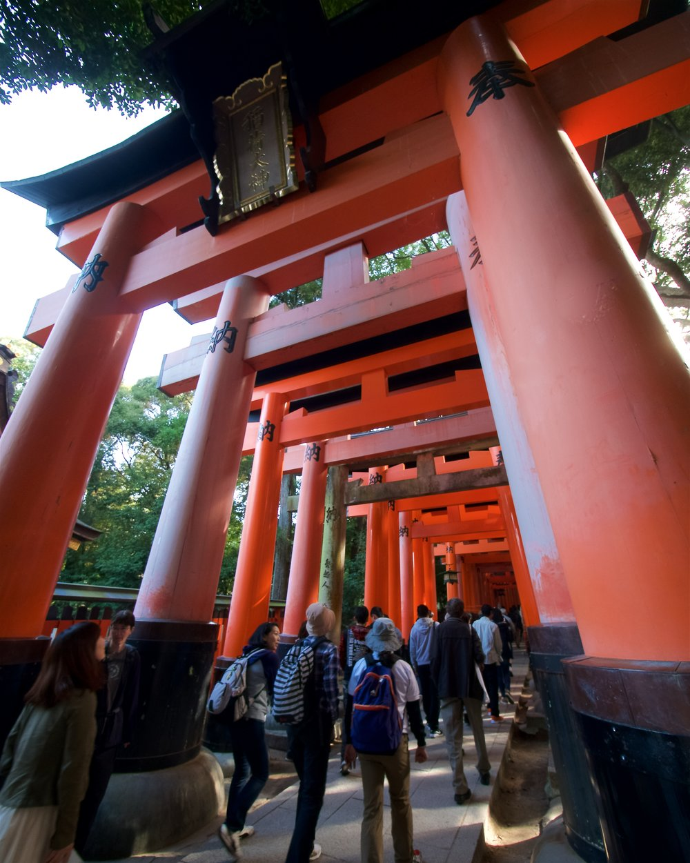 Beginning of the endless torii