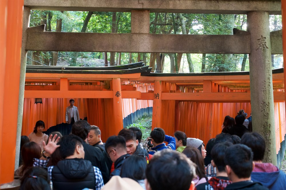 At one point, there are two rows of torii