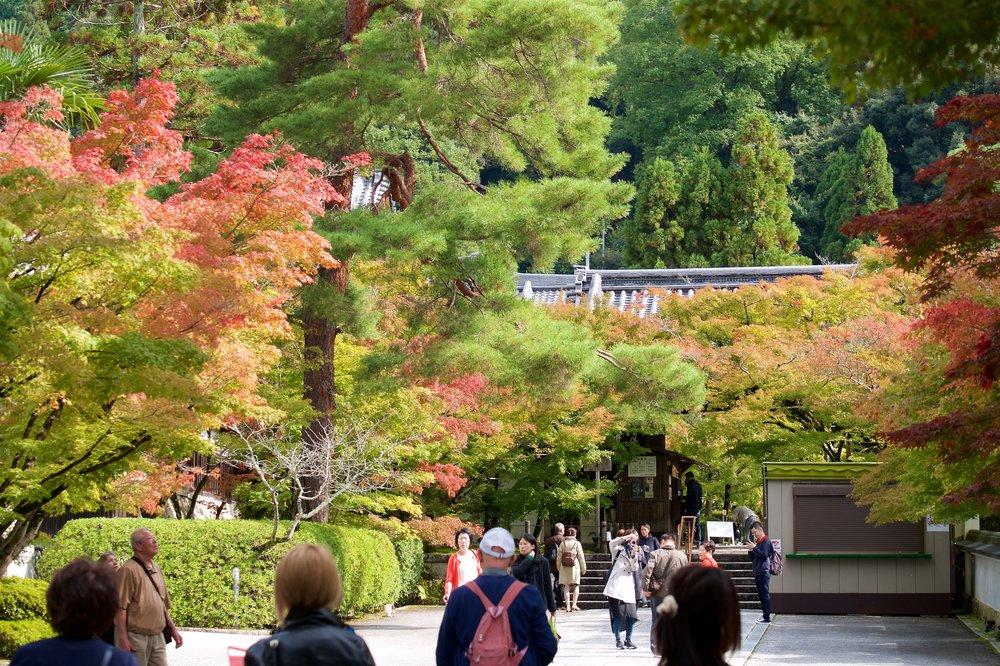 Front gate of Eikando Temple