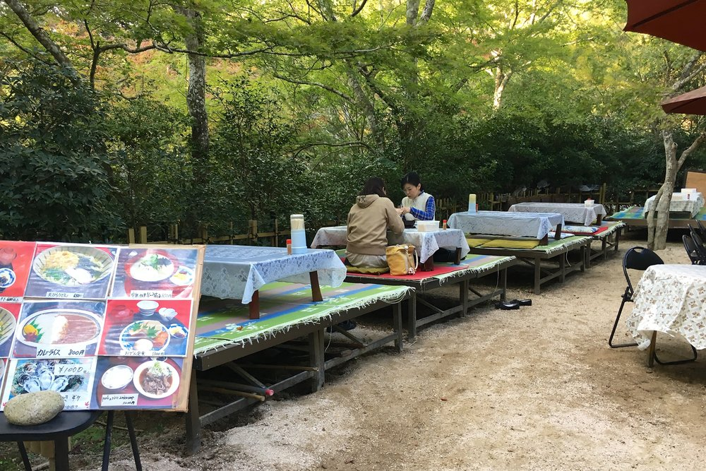 Eating Japanese-style in the park