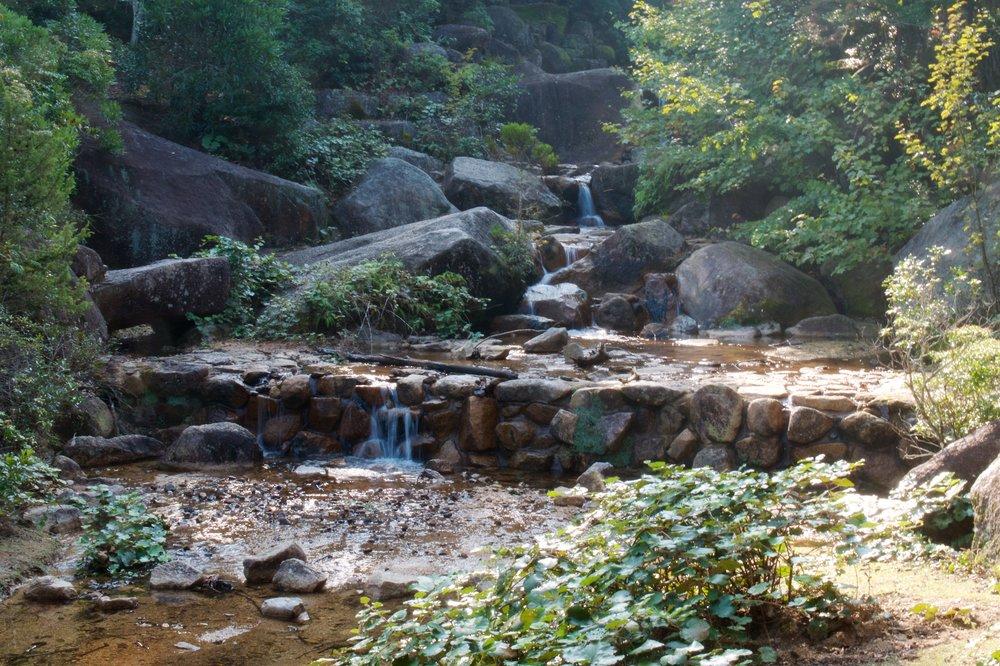 River alongside the trail