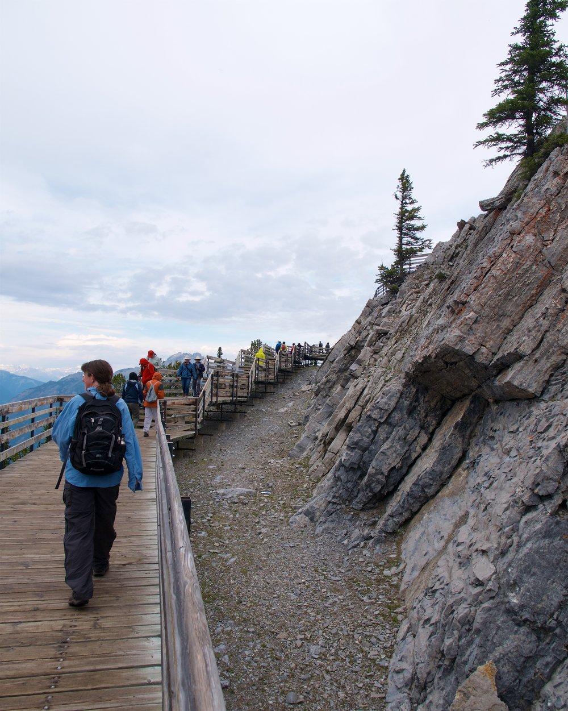 Boardwalk along the summit ridge