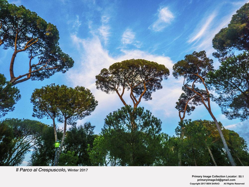 18.I. Trees at Dusk.jpg