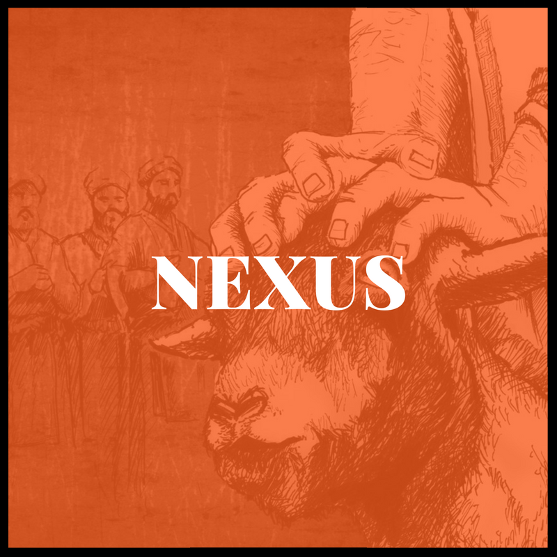 Nexux.png