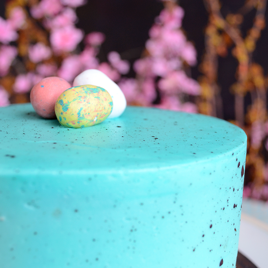 robin's egg themed cake