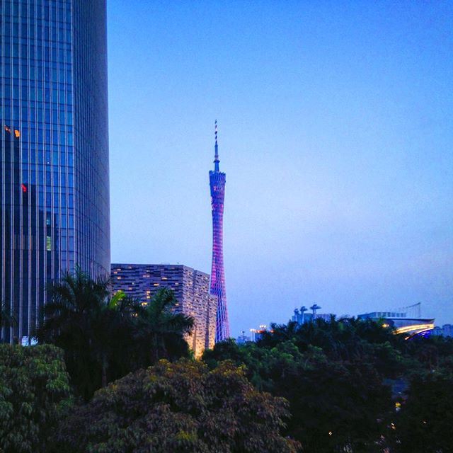 """Such a loud voice for a tiny creature..."" #nahko #guangzhou #canton #cantontower"