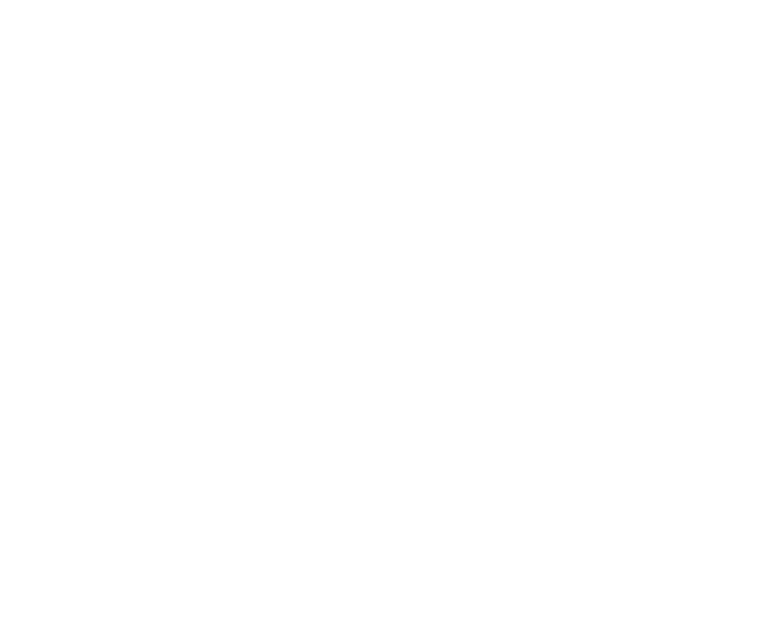 STEELCO Gutter Screen