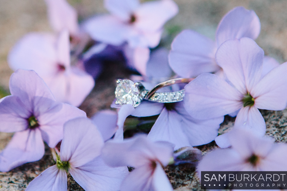 samburkardt_engagement_mustang_new_jersey_connecticut_arboretum_0012