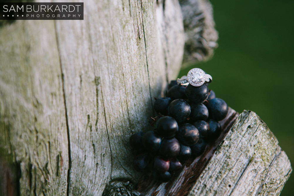samburkardt-fall-engagement-connecticut-vineyard-nature-wine_0015.jpg