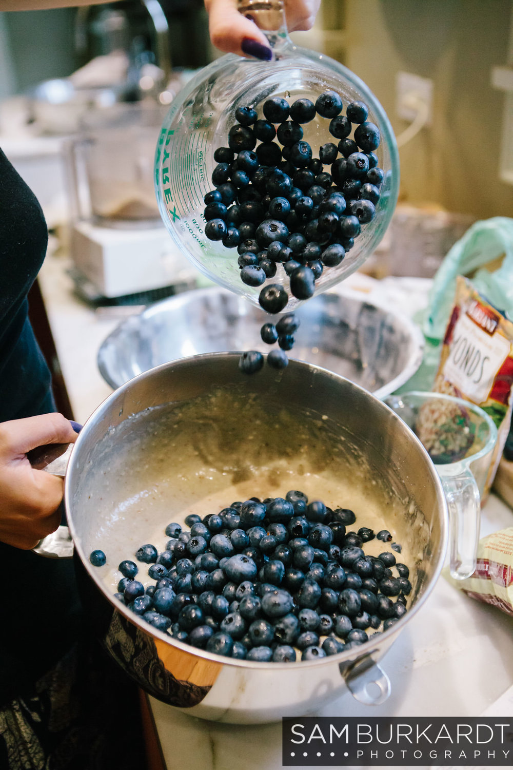 samburkardt_blueberries_kent_connecticut_024.jpg