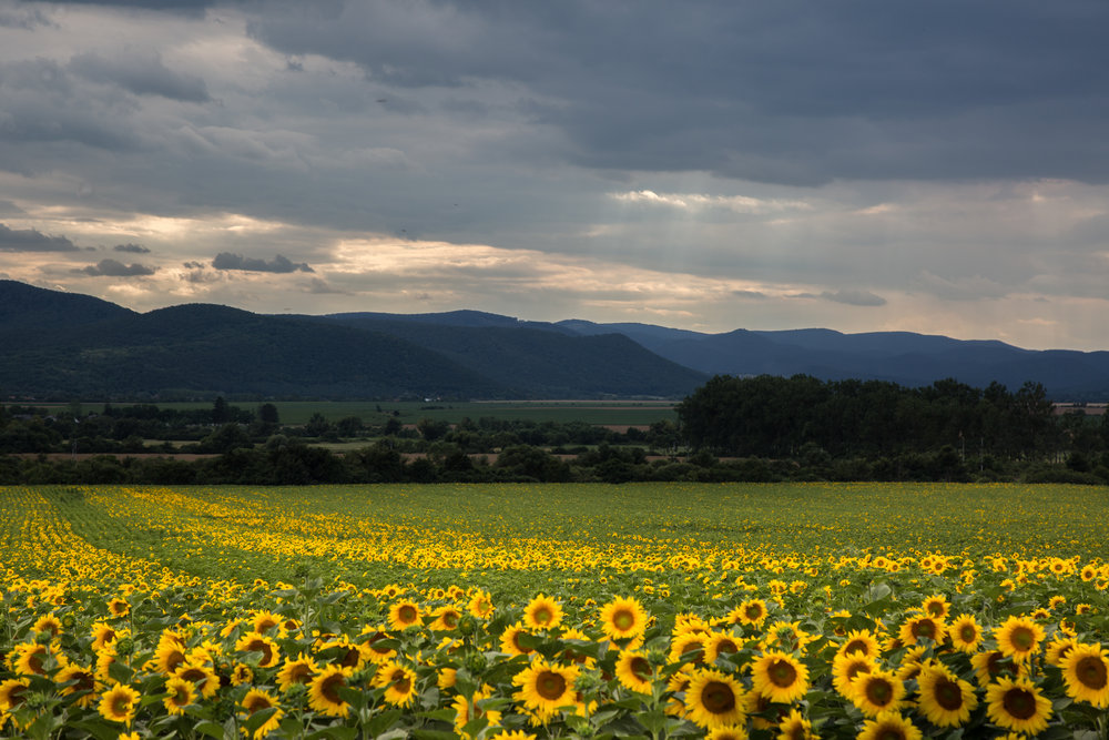 Velaty, Slovakia