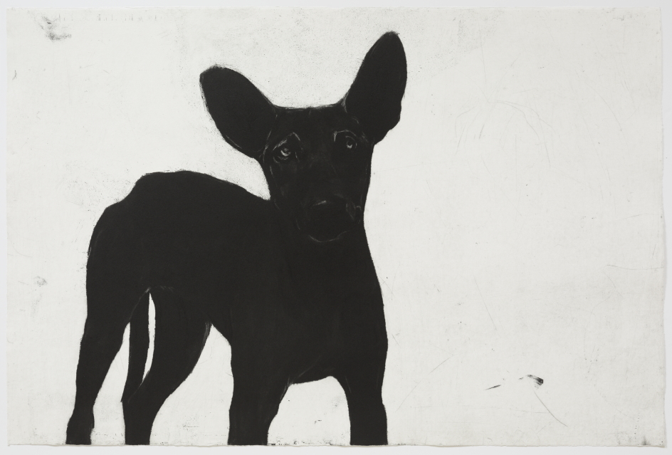 2016 © Deborah Williams,  Almost human? Exactly dog  2014, etching, engraving, aquatint and roulette intaglio, 58.5 x 87.5 cm, edition 20