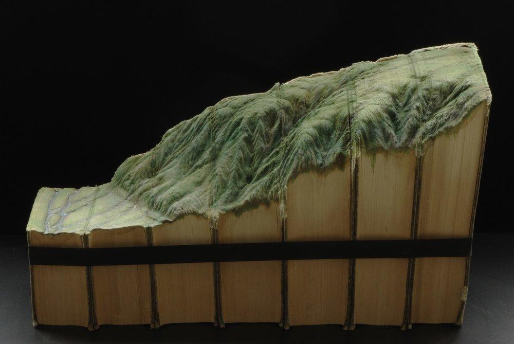 © 2012 Guy Laramée,El amor por las montañas nos curara.