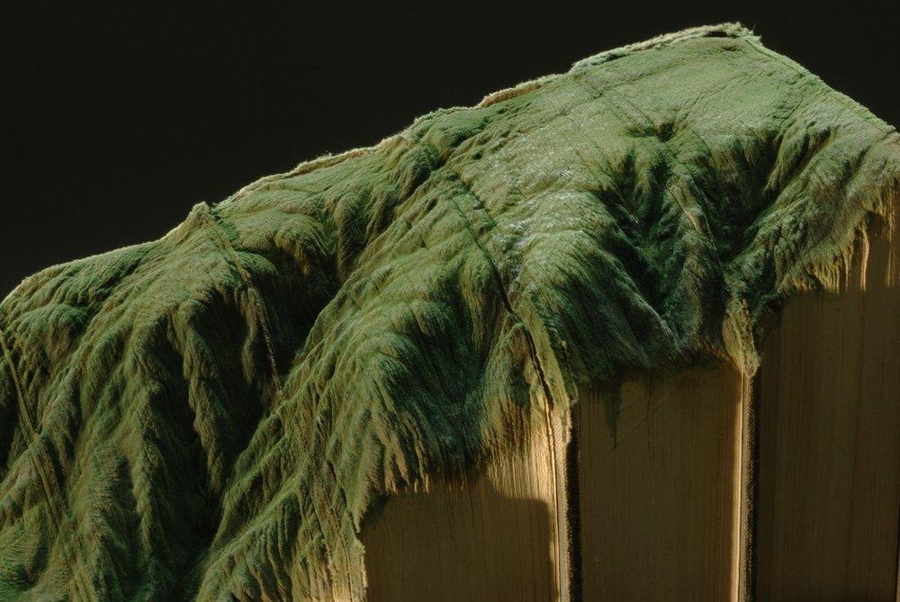 © 2012 Guy Laramée,El amor por las montañas nos curara, detail.