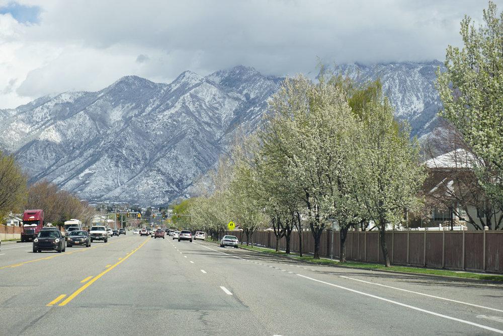 © 2018 Louise Levergneux. Salt Lake City, Utah with spring flowering trees and snow on the Wasatch Range Mountains. /  Le printemps à Salt Lake City, Utah, avec des arbres en fleurs et de la neige sur les montagnes Wasatch Range.