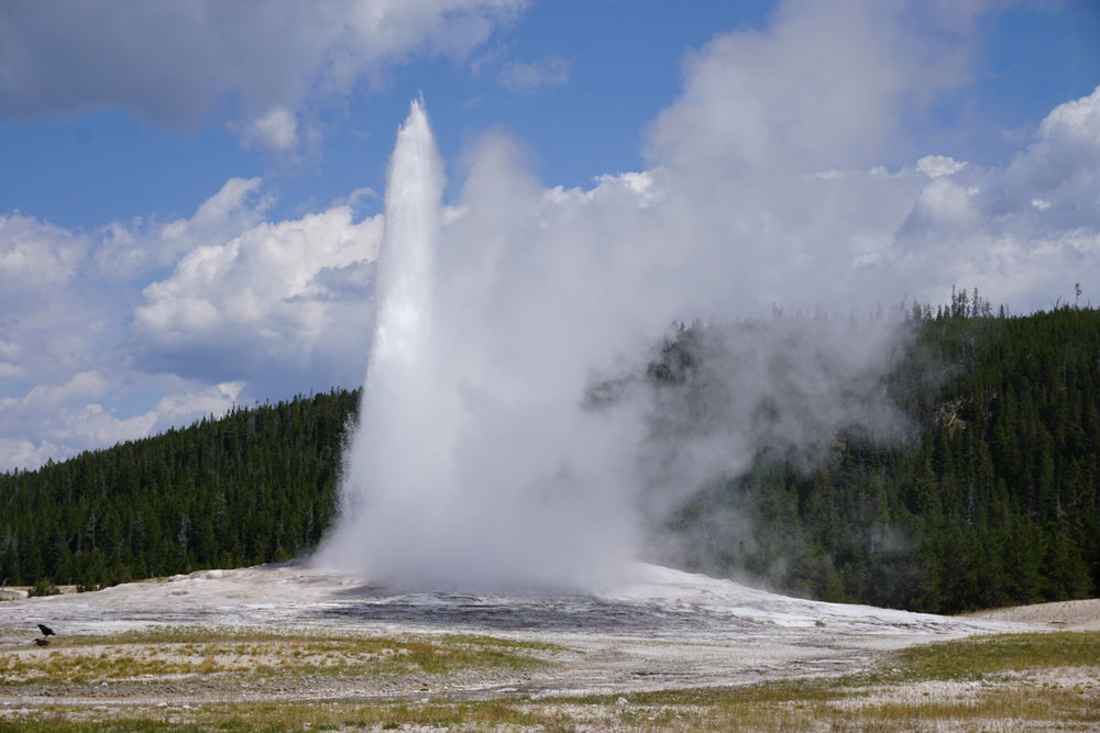 © 2018 Louise Levergneux, Old Faithful in Yellowstone National Park