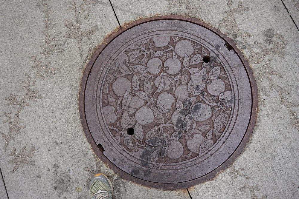 © 2018 Louise Levergneux. Haralson Apples, manhole cover on Nicollet Mall, designed by Kate Burke.